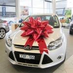 bows-for-cars-melborne