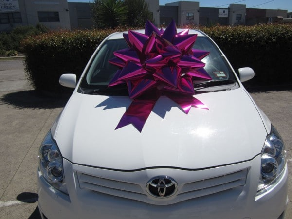 Car Bow - Hot Pink | King Regal Bow | Bowzz Bows