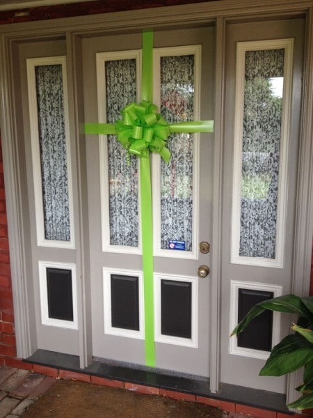 House Bow | Lime Green Aspire Bow | Bowzz Bows