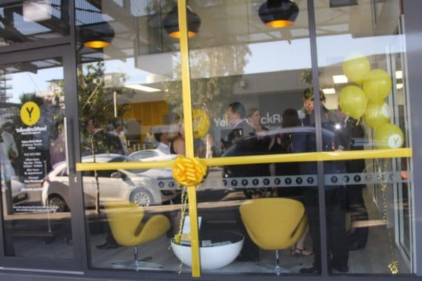Large Presentation Bow | Office Bow | Yellow Brick Road Office Opening Bow | Queensland